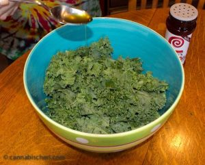 Recipe for Marijuana Kale Chips  -- Cannabis Cooking
