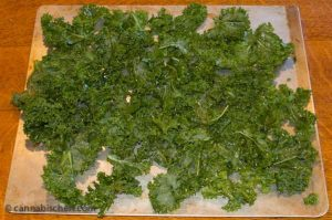 Spread seasoned, oiled kale leaves on a single layer on a baking sheet.