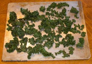 Medicated Kale Chips after baking.
