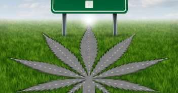 marijuana news -- legalization on the 2016 ballot