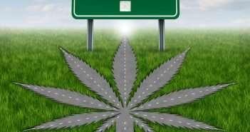 marijuana news -- legalization on the 2016 ballot