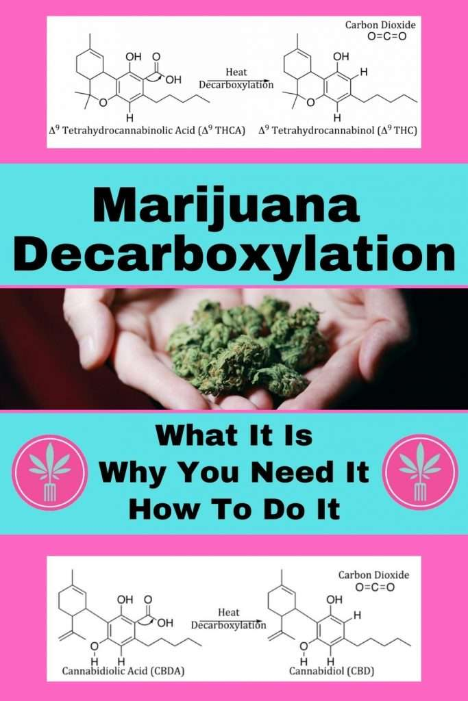 Marijuana before and after decarboxylation