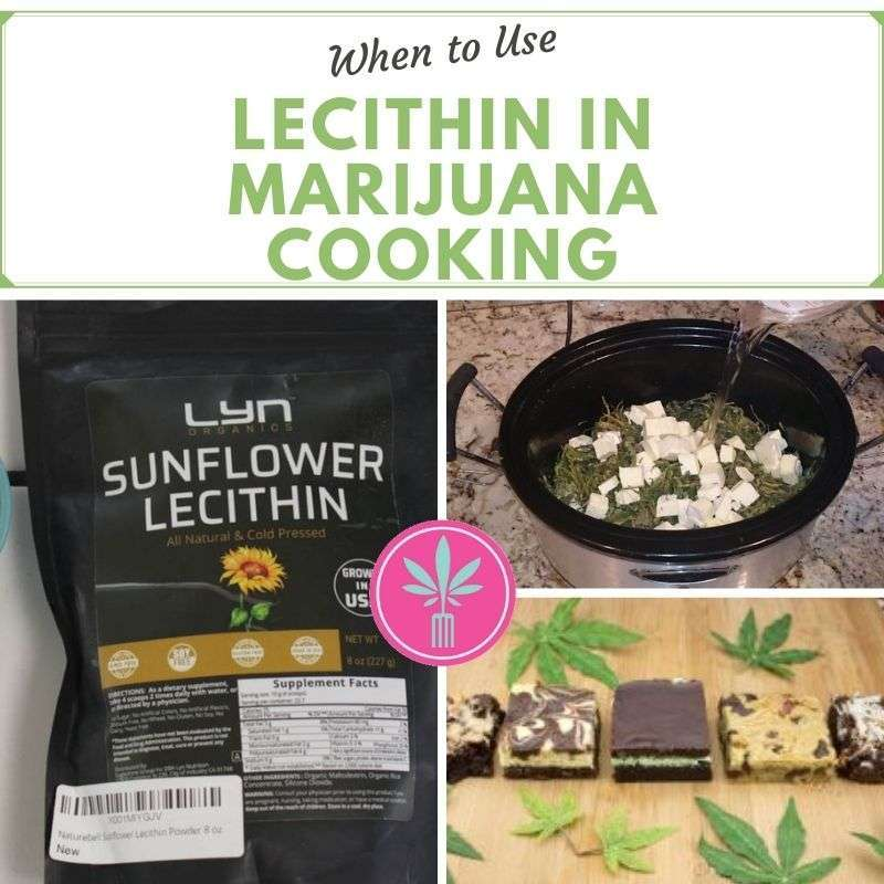 lecithin used in cannabis cooking