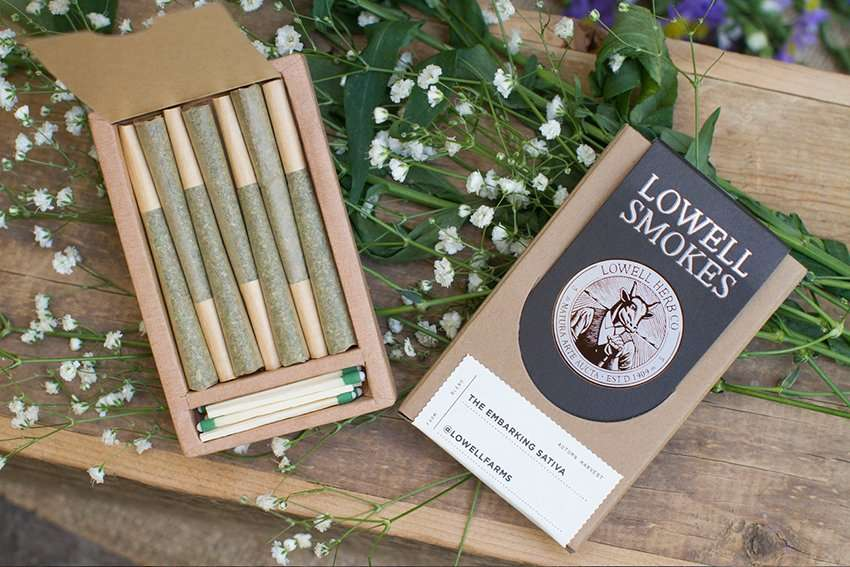 The Evolution of the Pre Rolled Marijuana Joint - Premium Pre Roll Reviews