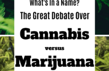 Article description: What's in a Word? The Great Cannabis versus Marijuana Debate