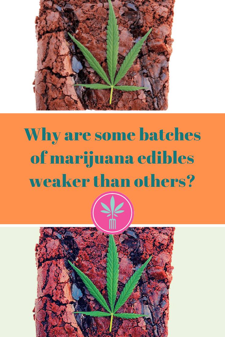 2 marijuana brownies with the captions: