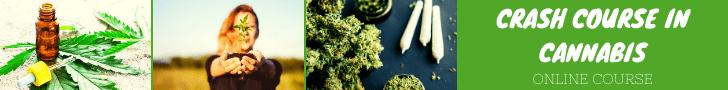 Crash Course in Cannabis