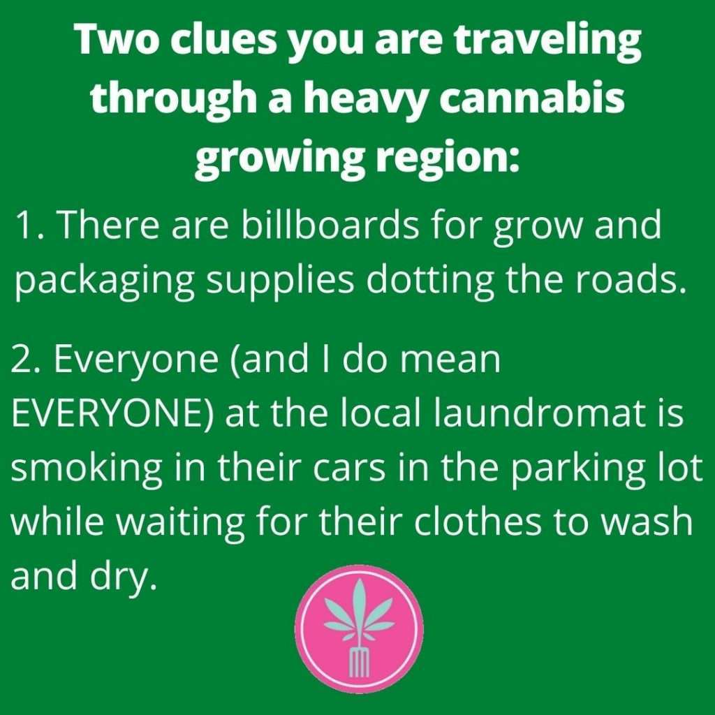Traveling through a cannabis growing region has two clues